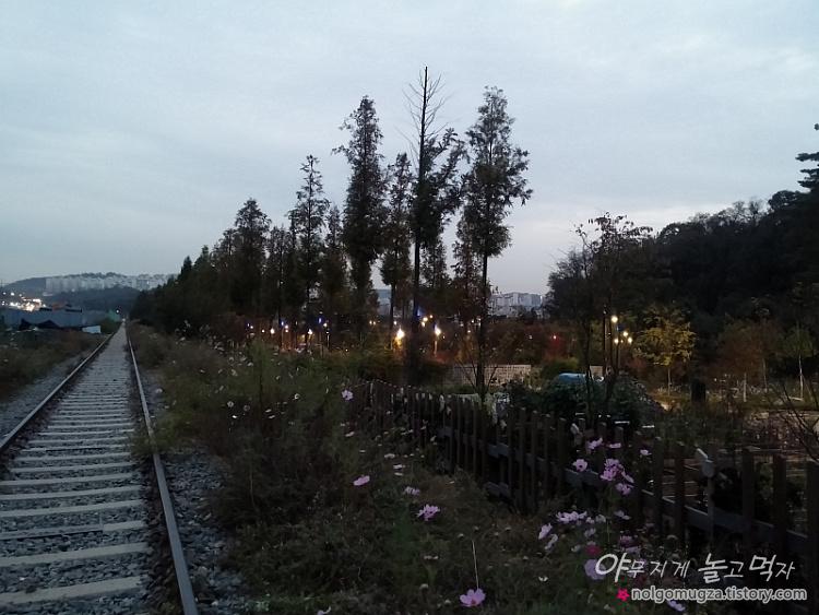 구로 푸른수목원 6