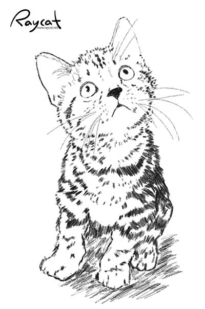 갤럭시 노트7 펜 스케치