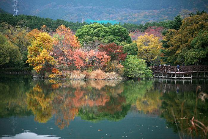[가을 단풍명소] 진해 내수면 환경생태공원
