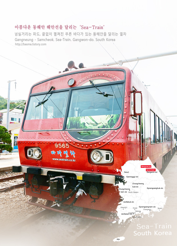 〔바다열차〕동해안 해안선을 씽씽~달리는 바다열차 (Sea Train)