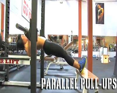 페러럴 푸쉬업(Parallel Pull-Ups)