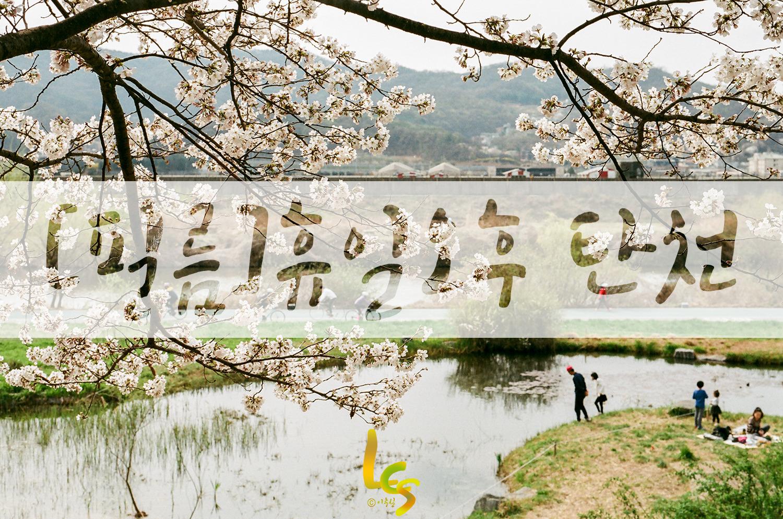 [필름]봄 날 휴일 오후...