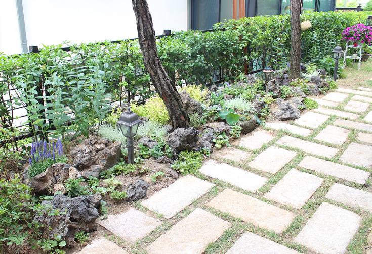 더숲의 정원이야기 :: 'DIY조경' 카테고리의 글 목록 (3 Page)