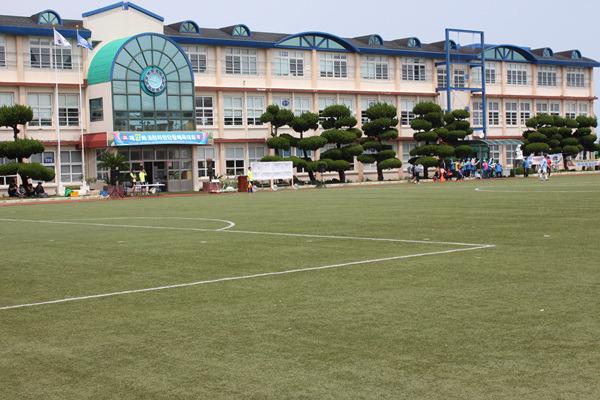 조천초등학교 전경