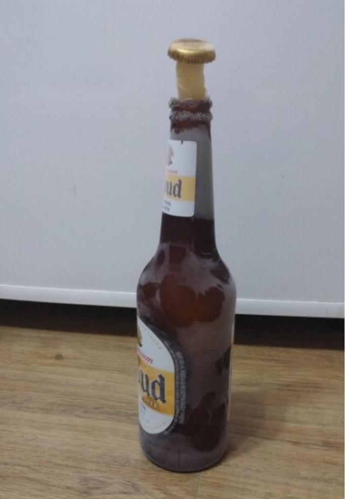 맥주 냉동실