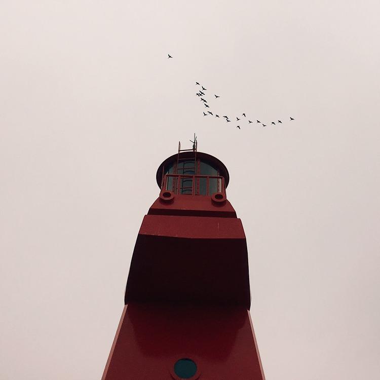 날아 날아 어디로 가는가?