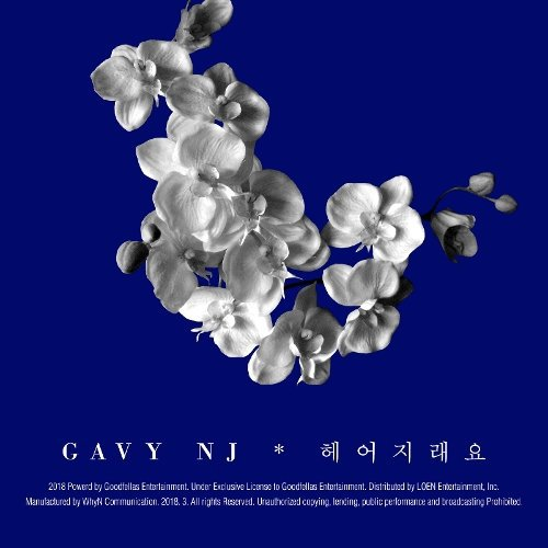 Gavy NJ - People said break it up Lyrics [English, Romanization]