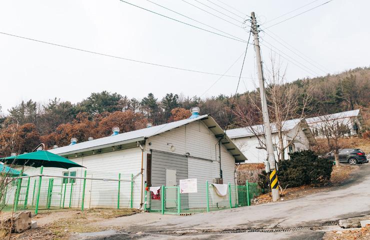 대전 동물보호센터 전경