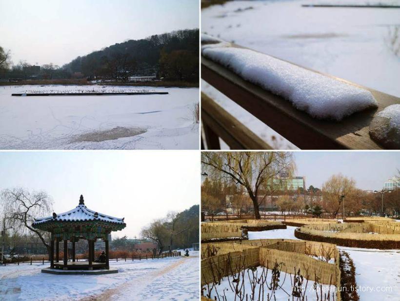 보라매공원 겨울 풍경
