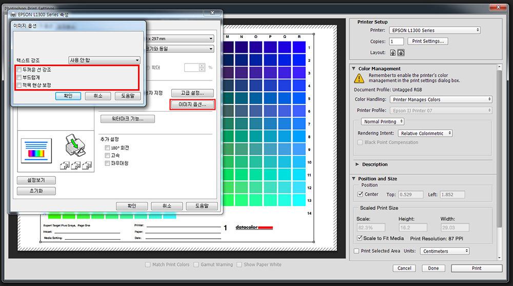 Epson L1300 설정_06