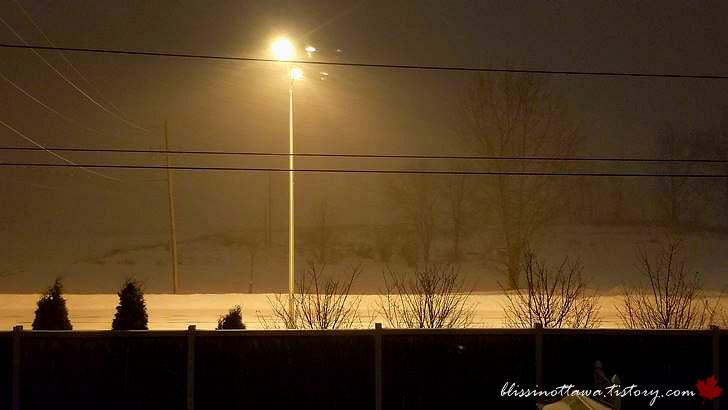 캐나다 겨울입니다