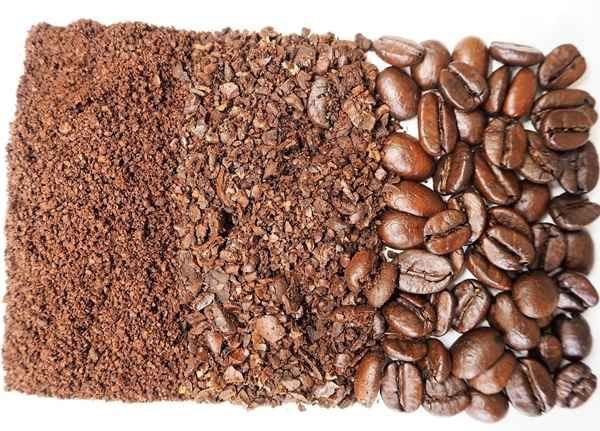커피 찌꺼기