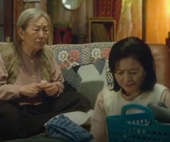 1996년 김인희, 2017년 김인희
