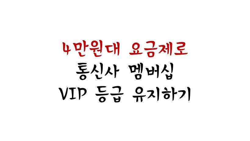 4만원대 요금제로 통신사 멤버십 VIP 등급 유지하기 (LTE 안심데이터 38.5)