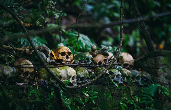 사진: 참고사진. 방치되어 오래된 유골들은 참혹하다. 마산 여양리 뼈무덤에서 발견된 유골들은 지금 사유지에 세워진 임시 컨테이너에 방치되어 있다고 한다. [보도연맹 학살사건의 진실]