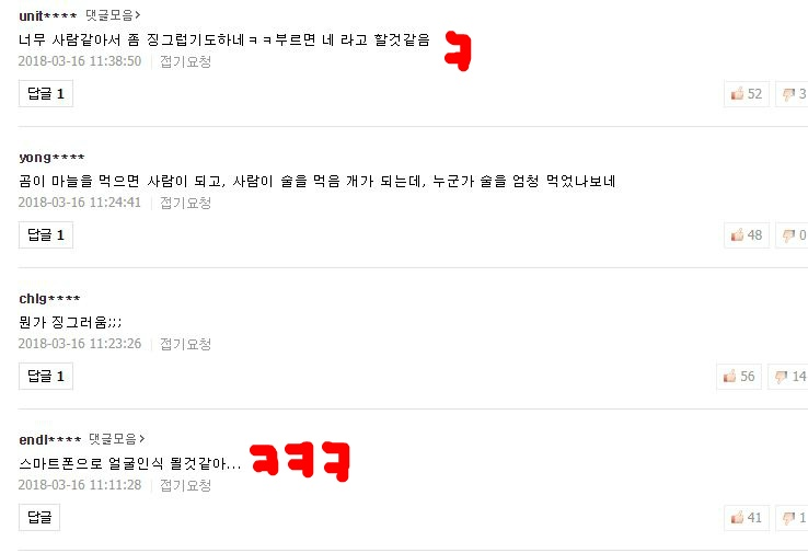 인면견 댓글 반응