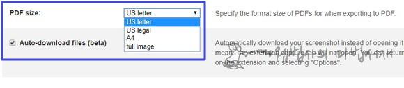 웹페이지 pdf 크기 및 전체 화면 스크롤 캡쳐 자동 저장