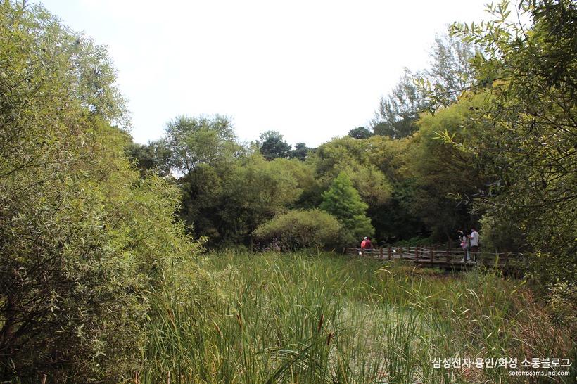 물향기수목원 습지생태식물원