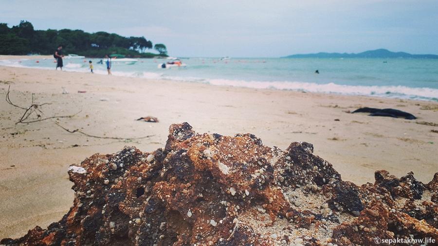 파타야코지비치호텔해변